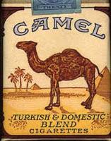 Camel_turkish
