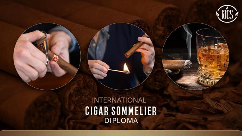 cigar_sommelier_diploma_brasil