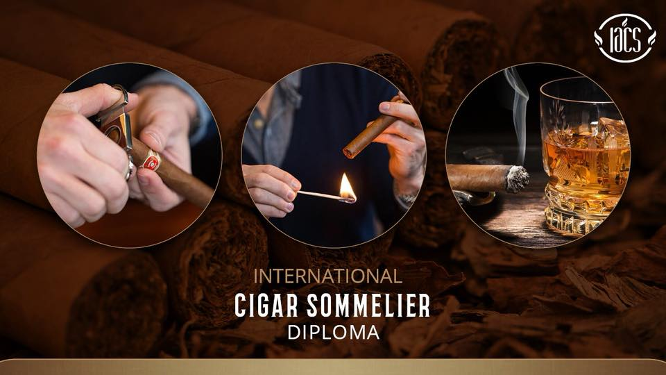 Cigar Sommelier Diploma