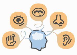 experiencia-sensorial-charutos